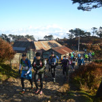 Runners set off on the trail