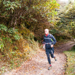 Runner on the trail in Rhododendron forest